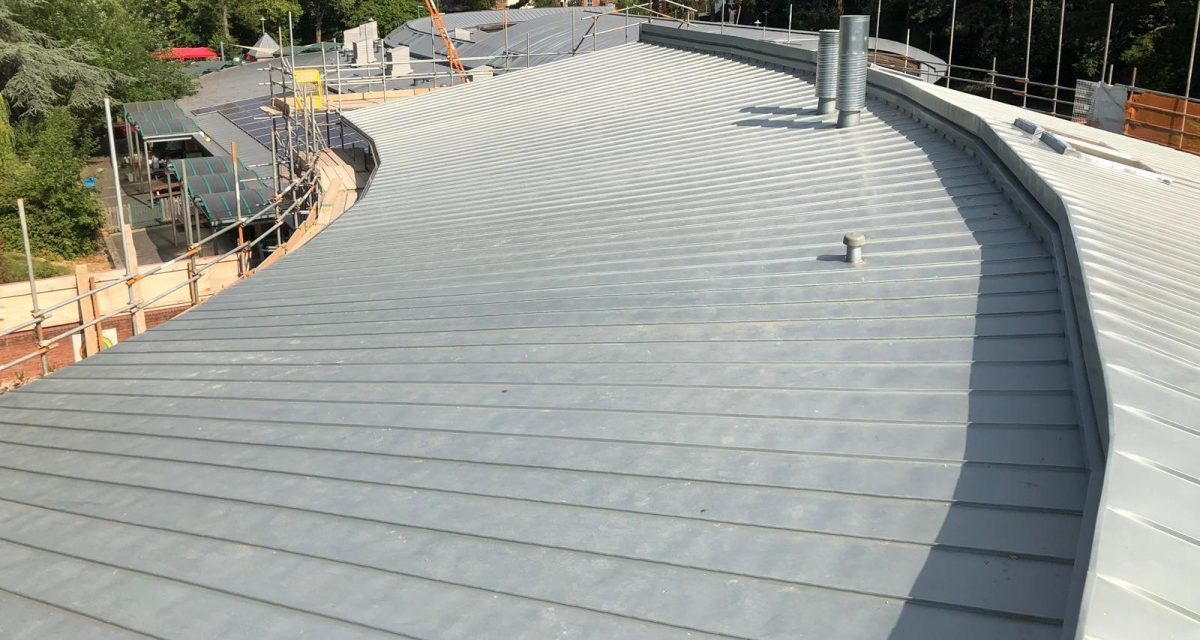 Red Hill Primary Longworth tight roof curve and tapered zinc roofing panels cropped for web